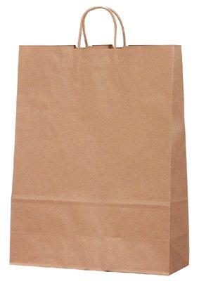 紙袋 手提げバッグ 未晒 特大