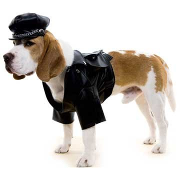 Biker Dog Dog Costume in 3 Sizes