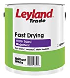 2.5LTR - LEYLAND PAINT FAST DRYING UNDERCOAT ORANGE & RED RANGE ORANGE FLAME