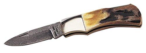 Bear & Son 540D Damascus Genuine India Stag Bone Mini Executive Lockback Knife, 2 1/2-Inch