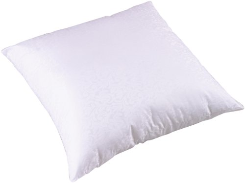Big Save! Carpenter Euro Square Sham Stuffer Pillow
