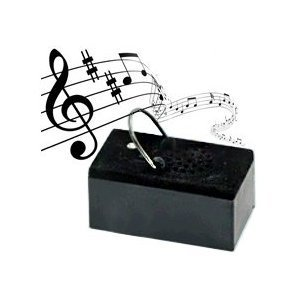 cottage garden digital recorder recordable player personalize your box for any. Black Bedroom Furniture Sets. Home Design Ideas