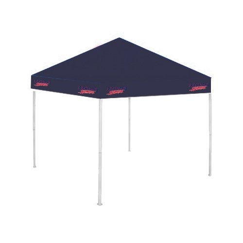 Richmond 9 ft x 9 ft Navy Tent 'Richmond Spiders w/Spider' coquette 40 48