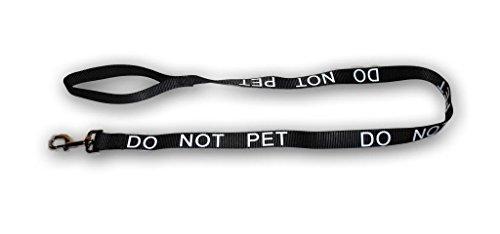 dynamism of a dog on a leash essay writer