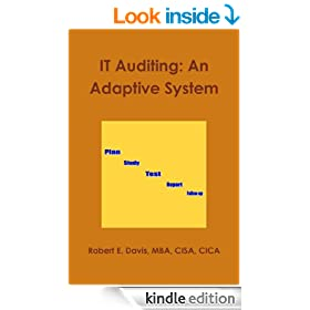 IT Auditing: An Adaptive System