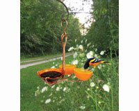 Songbird Essentials SEHHORFJ Copper Oriole Fruit and Jelly Feeder Single Cup