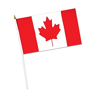 Beistle 50985 12-Pack Canadian Rayon Flag, 4-Inch by 6-Inch