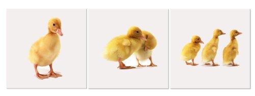 Duck Bathroom Sets front-1037106