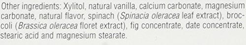 Source of Life Animal Parade Sugar-Free Calcium Vanilla Sundae Nature's Plus 90 Chewable