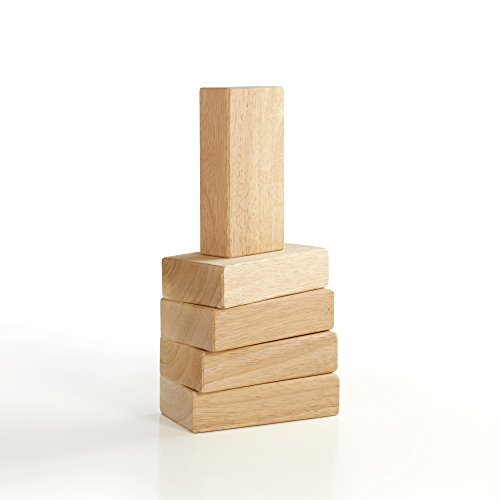 Guidecraft 5 Pc. Hardwood Unit Block Set G7600