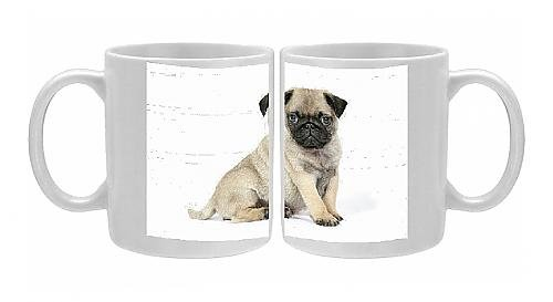 Photo Mug Of Dog. Pug ( Fawn ) 7 Week Old Puppy From Ardea Wildlife Pets front-898614