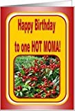 Happy Birthday to One Hot Moma! - Pepper plant Birthday Card Card