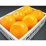 【 予約商品 】 愛媛県産 柑橘 せとか 特秀品 2Lサイズ(1個250g前後) 6個入り 化粧箱入り 【 1月下旬 】