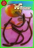 6 Regenwürmer aus Gummi