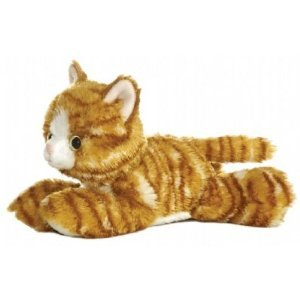 Aurora Molly Orange Tabby Cat 8