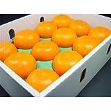 愛媛県産 柑橘 せとか 12個入り ランキングお取り寄せ