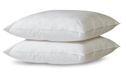 biopedic-2-pack-bed-pillows-with-built-in-ultra-fresh-anti-odor-technology-jumbo-white