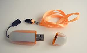 2GB Flash Drive with Write-Protect switch, AES Encryption and Password Protection & Encased in Protective Silicone Sleeve
