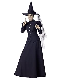 Wicked Witch Of Oz The Great And Powerful Sexy Womens Fancy Halloween Costume L