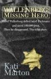 img - for Wallenberg: Missing Hero book / textbook / text book
