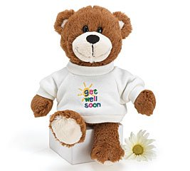 Adorable 10'' Plush ''Get Well'' Teddy Bear Wonderful Get Well Gift For All Ages