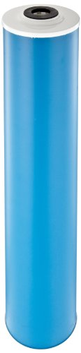 Pentek GAC-20BB Carbon Filter Cartridge, 20
