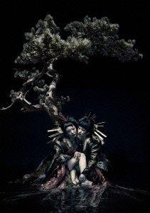 The Gazette Live Tour 12-13【division】final Melt Live At 03.10 Saitama Super Arena [Dvd]