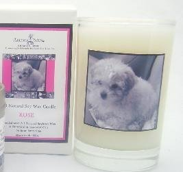 Aroma Paws 220 - Breed Candle Glass Gift Box - Poodle - Rose - 5 Oz