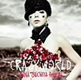 土屋アンナ CD・DVD 「Crazy World」