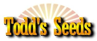 Todd's Seeds - Hard Red Wheatgrass - 10 Lb's - Sprouting Wheat Grass Seeds for Sale - Plant & Grow Wheatgrass, Flour, Grain & Bread - Wheatgrass Juice - Excellent Germination - Sprouting Seeds - Sprouted Wheat (Organic Wheatgrass Seeds compare prices)
