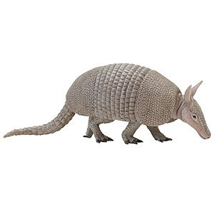 Armadillo Gifts - Safari Ltd Incredible Creatures Armadillo