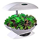Miracle-Gro AeroGarden 7-Pod Indoor Garden with Gourmet Herb Seed Kit, White