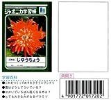 【まとめ買い】ジャポニカ学習帳 B5.自由帳  JL-72 10冊