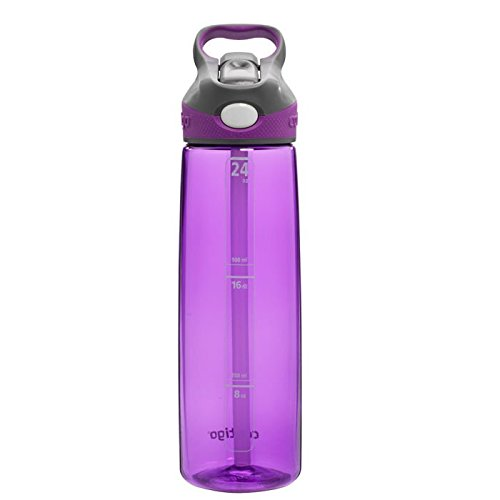 Contigo-Autospout-Addison-Water-Bottle-32-Ounce-Lilac