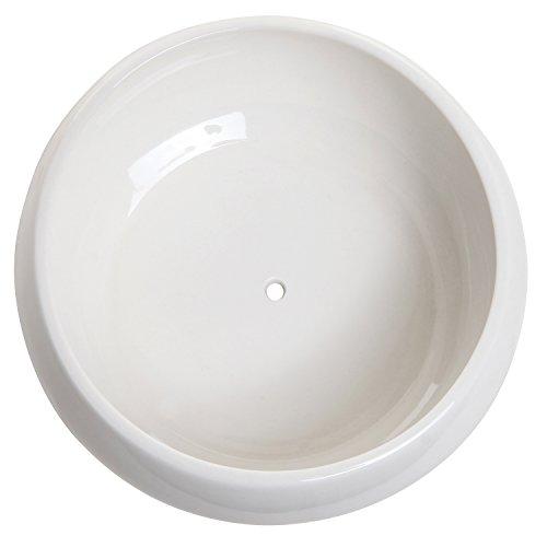 6 5 Inch Round White Ceramic Succulent Plant Flower