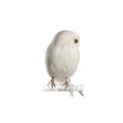 RoomClip商品情報 - バード 白フクロウ A PUEBCO