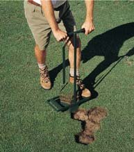 Hexagon Turf Repair Tool