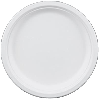10 Inch Round Disposable Dinner Plate Compostable made from Sugarcane (Bagasse) by Greenplate 50 Count White