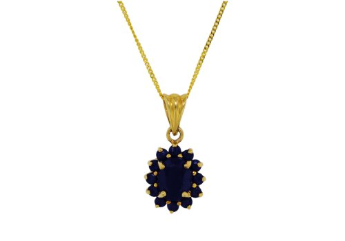 9ct Yellow Gold Sapphire Cluster Pendant on Curb Chain 46cm