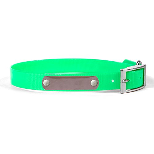 personalized-waterproof-dog-collar-with-name-plate-for-small-dogs-size-16-bright-green-silver-namepl