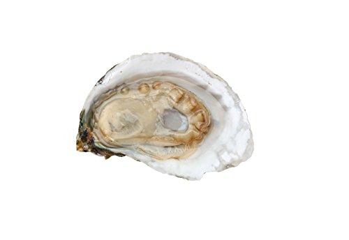 Fresh Chesapeake Bay Oysters (100 Eagle Flats)