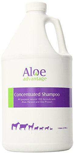 Durvet 077-00345 Aloe Concentrated Shampoo 10X