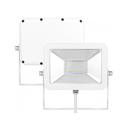 LMA FL-20 hocheffizienter Outdoor LED piantana per artigianato e industria, 1.800lm, 20 W, IP65