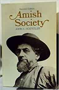 amish society vs modern society essay Cultural research of the amish essay writing the most conservative old order amish groups also reject most of the utilities of the modern society, including.