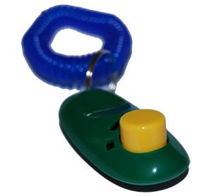 Pet Training Clicker - Dog Training Clicker with Wrist Band Coil Strap - Green