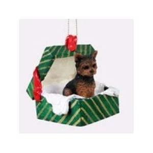 Amazon.com: Yorkshire Terrier Puppy Cut Gift Box Green Ornament ...