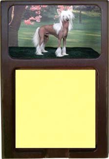 Chinese Crested Sticky Note Holder impacted canine an overview