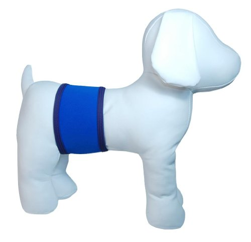 Playapup Dog Belly Band, Royal, Small
