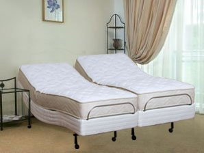 Where can you buy split king size insignia latex mattress for Where can you buy beds