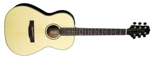 Takamine G Series Eg416S New Yorker Acoustic Electric Guitar, Natural